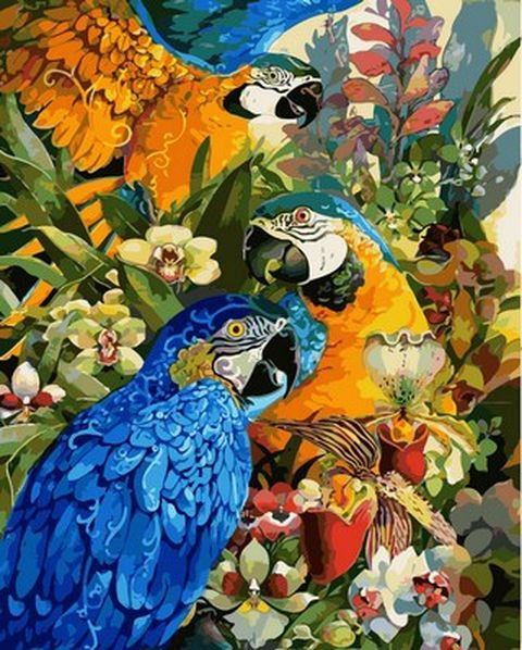 Раскраска по цифрам 40×50 см. В лесах Амазонки Художник Дэвид Галчутт