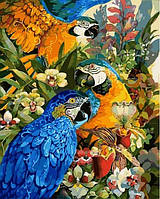 Раскраска по цифрам 40×50 см. В лесах Амазонки Художник Дэвид Галчутт, фото 1