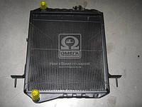 Радиатор охлаждения Богдан,  Isuzu Е-2 2 ряд. медн. (TEMPEST)