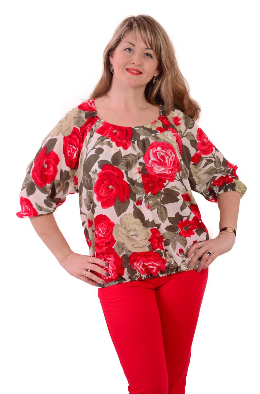 Блуза шовкова крепдишин шовк натуральний жіноча Бл 016-002
