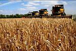 Новые условия развития для сельхозпредприятий