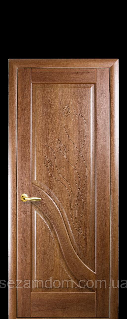 Дверь межкомнатная ГЛУХОЕ С ГРАВИРОВКОЙ