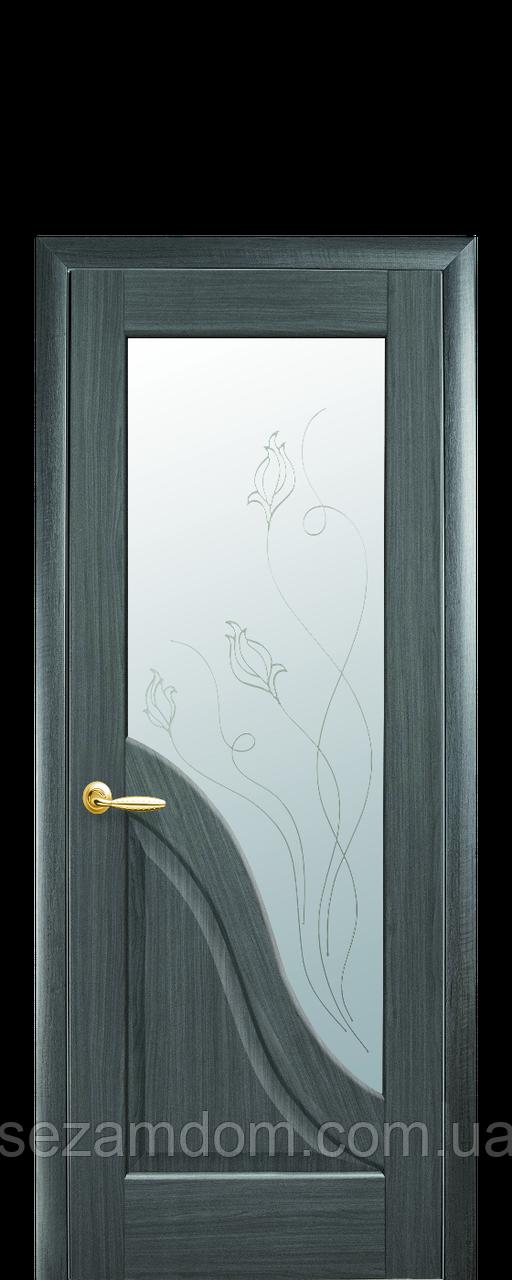 Дверь межкомнатная АМАТА СО СТЕКЛОМ САТИН И РИСУНКОМ №2