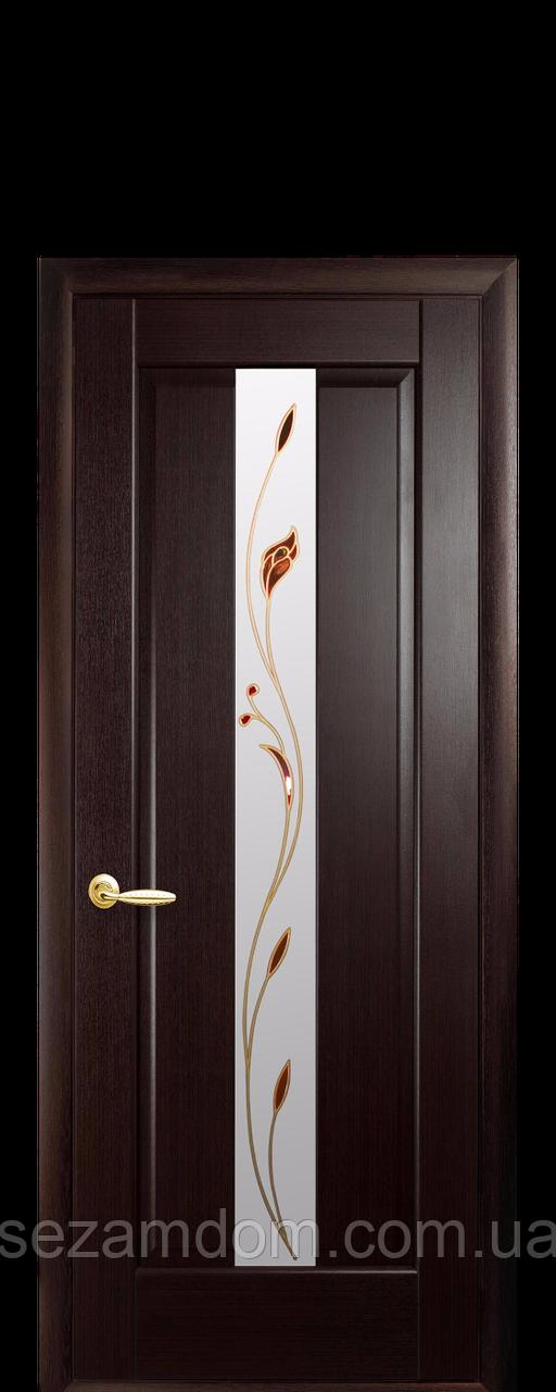 Дверь межкомнатная ПРЕМЬЕРА СО СТЕКЛОМ САТИН И РИСУНКОМ №1
