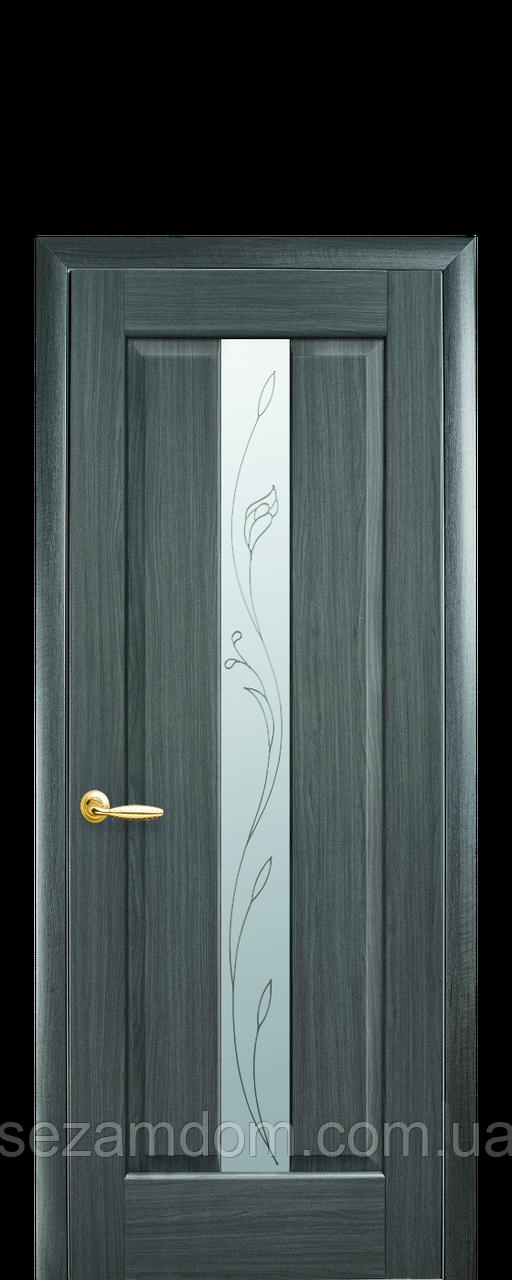 Дверь межкомнатная ПРЕМЬЕРА СО СТЕКЛОМ САТИН И РИСУНКОМ №2
