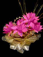 Букет из конфет на день рождения Малиновый щербет