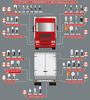Ассортимент и применяемость автомобильных ламп для грузового транспорта (24V)