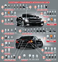 Ассортимент и применяемость автомобильных ламп для легкового транспорта (12V)