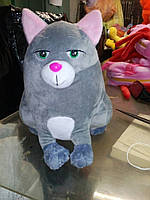 Кошка Хлоя
