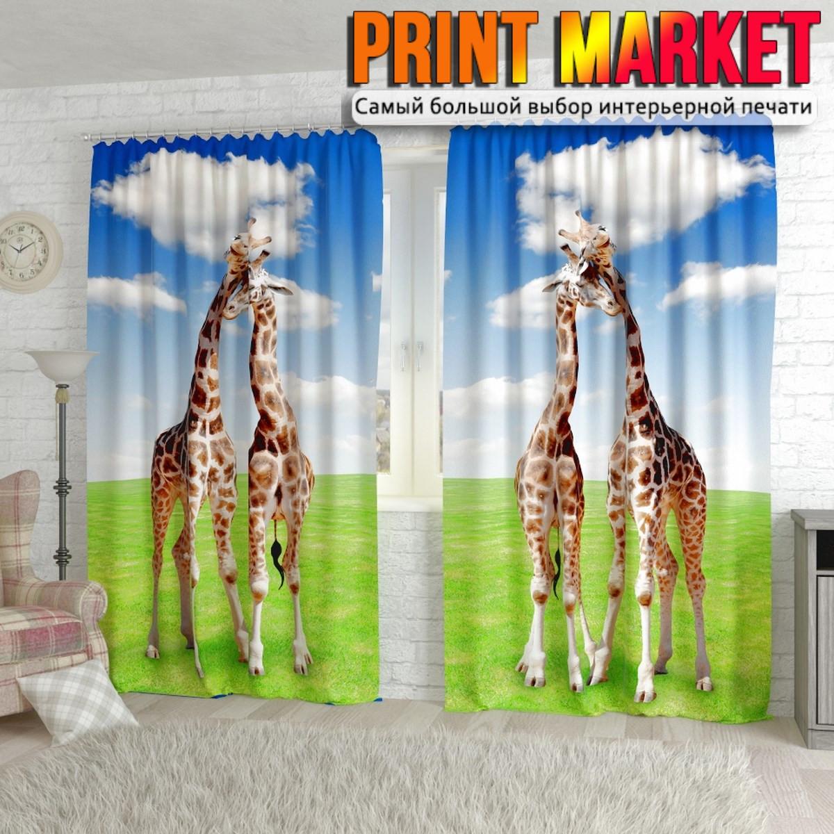 Фотошторы жирафы на лугу