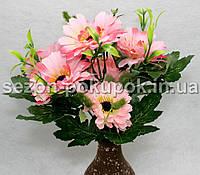 Букет маргаритки (7 цветочков) Цвет - розовый Цена за букет