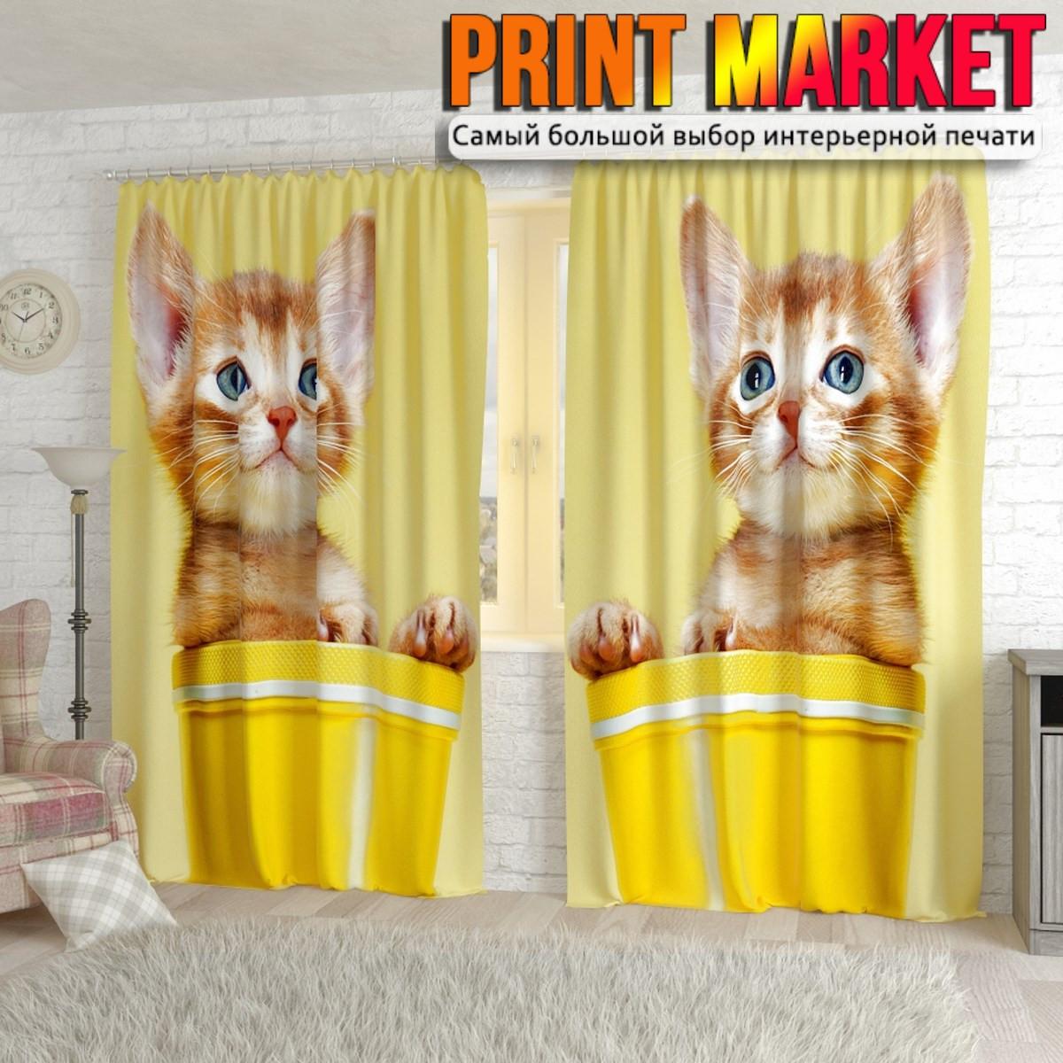 Фотошторы кошка в горшочке