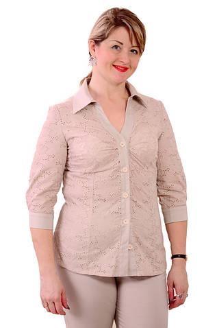 Блуза-рубашка Бл 637-1,из хлопковой прошвыи хлопка, размеры 48-56 .