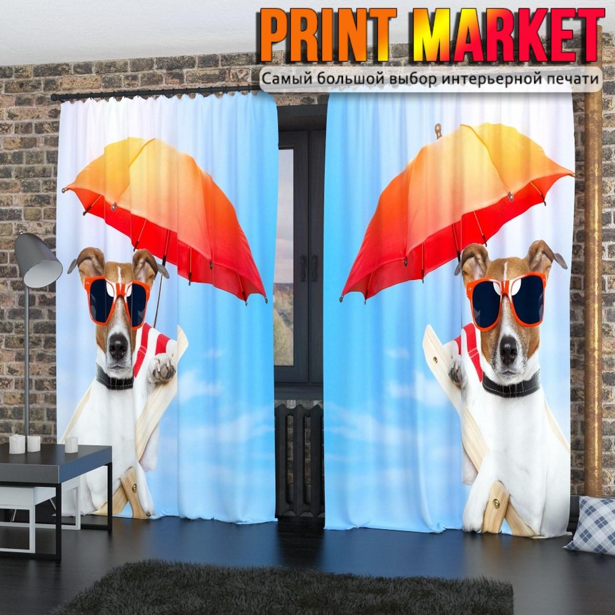 Фотошторы собачка с зонтиком