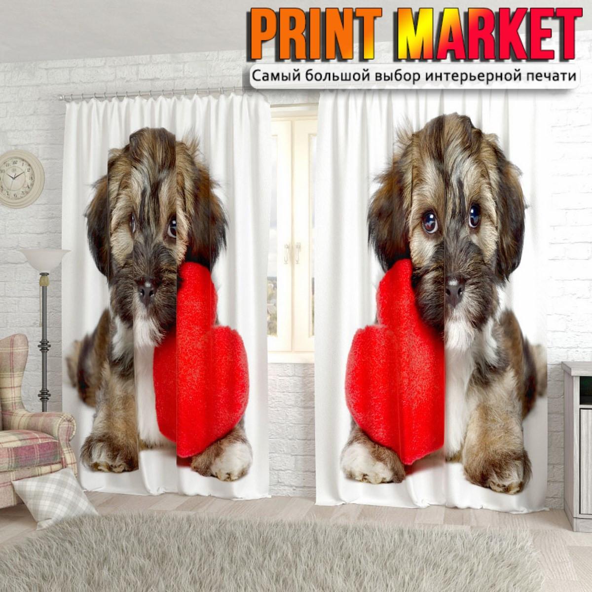 Фотошторы щенок с сердцем