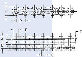 60H-1 цепь роликовая (5м)