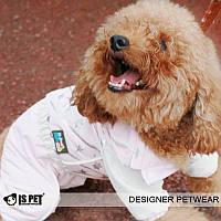 """Комбинезон, дождевик """"Все звезды"""" для девочек Is Pet. Одежда для собак."""