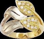 Золотое кольцо с ци