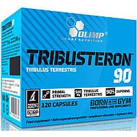 Трибулус Tribusteron Terrestris 90 Olimp Labs  (сапонины 90 %) 120капс
