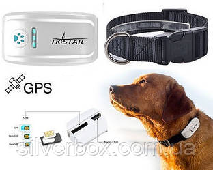 Ошейник с GPS трекером для средних и больших собак Влагопылезащита IP65