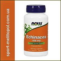 NOW Echinacea 400 mg 100 veg caps