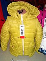 Детская куртка весна-осень