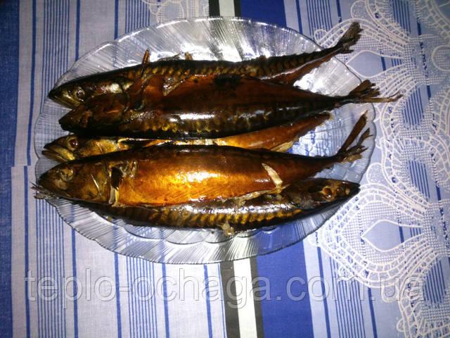 kopchenie ribi v koptilne
