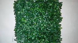 Газонная трава самшит (25*25)Коврик искусственный самшит.