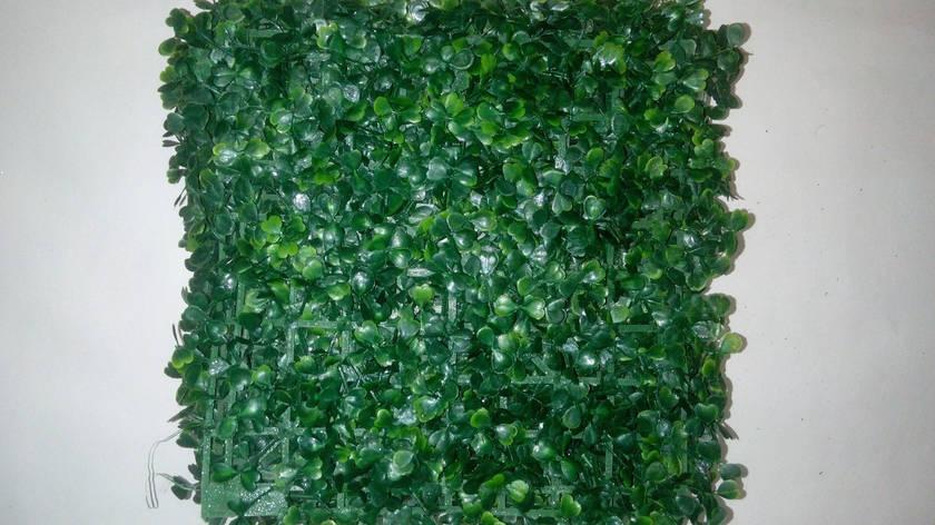 Газонная трава самшит (25*25)Коврик искусственный самшит., фото 2