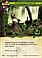 Warhammer: Invasion LCG: The Iron Rock Battle Pack, фото 5