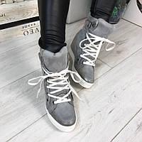 Женские  сникерсы на танкетке 7 см, эко замша, серые / кроссовки  сникерсы женские 2017, на шнуровке, модные