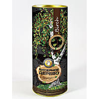 "Набор для творчества ""Бисерное дерево"" Береза 2700 БД-01"