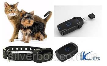 Ошейник с GPS трекером для кота кошки собаки LK120 Защита IP67