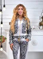 Велюровый женский спортивный костюм, размеры 42,44,46,48,50 , про-во Турция