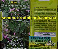 Шалфей лекарственный сорт Бриз многолетнее лекарственное  растение