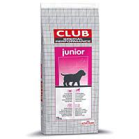 ROYAL CANIN SPECIAL CLUB Performance JUNIOR 20кг корм для разведения собак маленьких и средних пород
