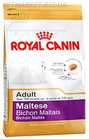 Royal Canin (Роял Канин) Maltese Adult (для собак породы мальтийская болонка от 10 мес.), 0,5 кг