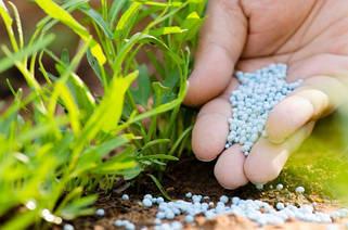 Гранулированные минеральные удобрения (внесение в почву)
