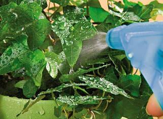 Органо-минеральные удобрения (листовая подкормка)