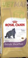 Royal Canin (Роял Канин) British Shorthair Adult (для британцев короткошерстных от 12 мес.), 2 кг