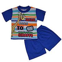 Костюм для мальчиков футболка и шорты, на рост 74,80,92, Турция