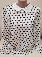 Белая блуза в черный горошек