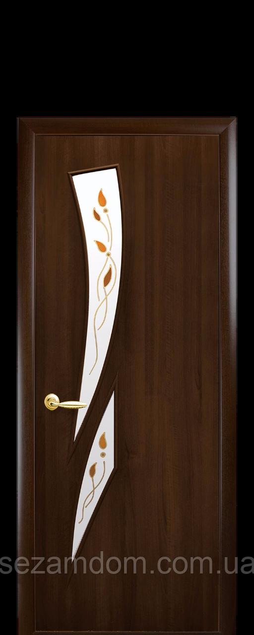 Дверь межкомнатная КАМЕЯ СО СТЕКЛОМ САТИН И РИСУНКОМ Р1 Экошпон