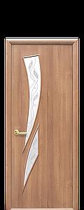 Дверь межкомнатная КАМЕЯ СО СТЕКЛОМ САТИН И РИСУНКОМ Р3 ПВХ