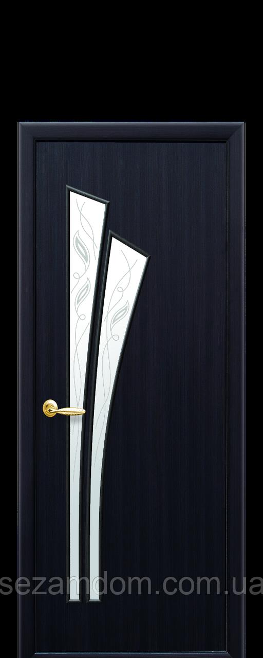 Двері міжкімнатні ЛІЛІЯ ЗІ СКЛОМ САТИН І МАЛЮНКОМ Р3 Екошпон