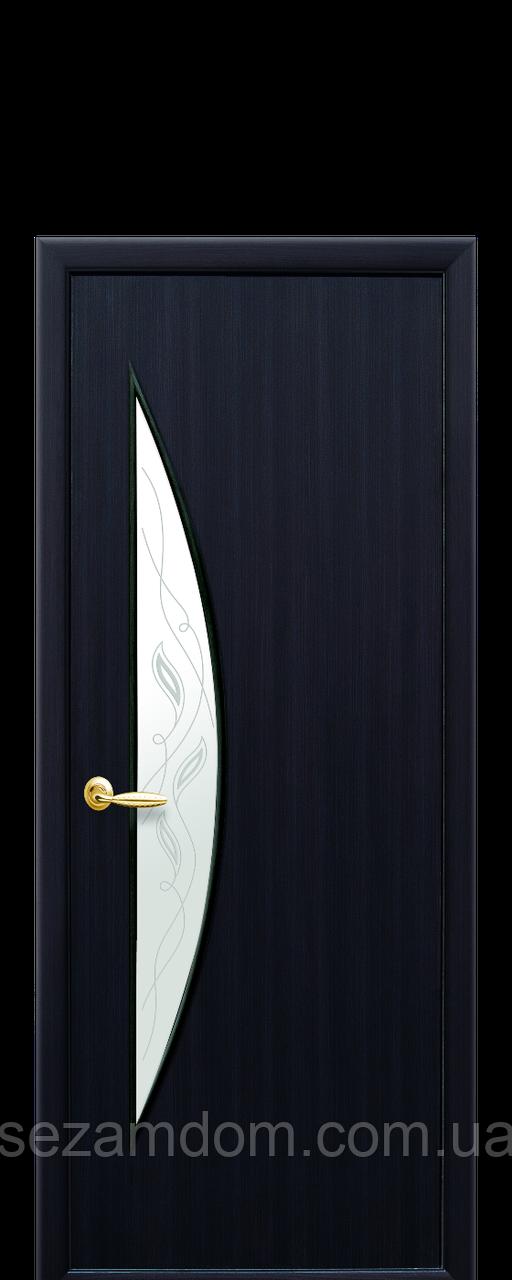 Дверь межкомнатная ЛУНА СО СТЕКЛОМ САТИН И РИСУНКОМ  Р3 Экошпон