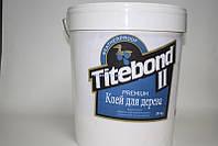 Профессиональный столярный клей D3 Titebond II Premium (США) (1 кг)
