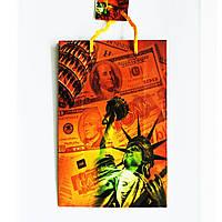 Подарочный пакет Средний узкий 16х25х7см Статуя свободы