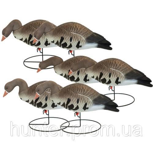 """Чучела гусей """"Hard Core Full-Body Specklebelly Goose Decoys"""", 6 шт - «ОХОТНИК» в Киеве"""