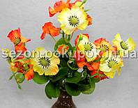 Букет анютины глазки (18-20 цветочков) Цвет -оранжево-желтый Цена за букет